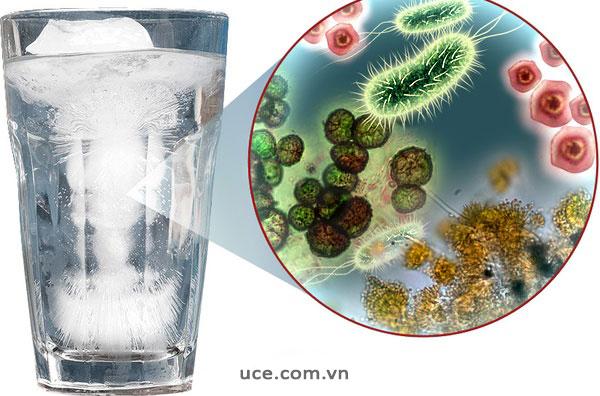 Nước bề mặt có nguy cơ chứa vi khuẩn cao