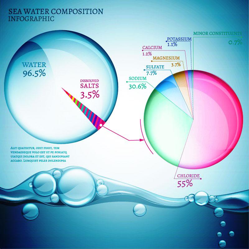 Nước biển (chuẩn) có chứa 3.5% hay 35‰ muối (TDS) và các thành phần chính khác