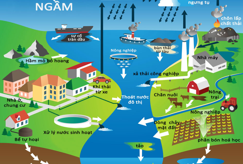 Causes of groundwater and surface water pollution